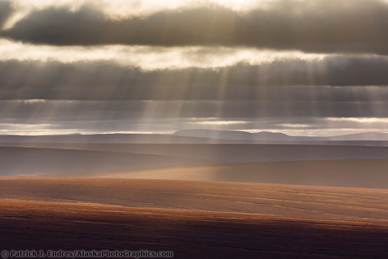 Rays of sun fall over the undulating tundra landscape of the Seward peninsula, Alaska.