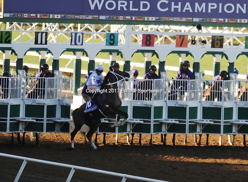 DEL MAR, CA - NOVEMBER 04: Golden Dragon #10, ridden by Evin Roman, breaks early during the Sentient Jet Breeders' Cup Juvenile race on Day 2 of the 2017 Breeders' Cup World Championships at Del Mar Racing Club on November 4, 2017 in Del Mar, California. (Photo by Carson Denis/Eclipse Sportswire/Breeders Cup)