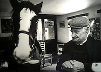A horse enjoys a pint in Castlecove in 1985.<br /> Picture by Don MacMonagle
