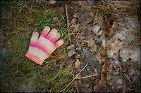 Lost woollen glove in Richmond Park http://www.vivecakohphotography.co.uk/2012/01/24/a-walk-in-richmond-park/