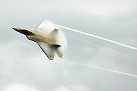 F-22 Raptor at Elmendorf Air Force Base, Alaska.