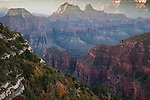 Early morning light in the Grand Canyon from the north rim in autumn