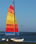 A colorful Hobie Cat sailboat sits on the beach at Shell Point, Florida south of Tallahassee.      (Mark Wallheiser/TallahasseeStock.com)