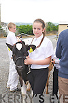 at the Castleisland Mart Calf Show on Saturday