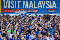Cardiff fans celebrate their side's promotion during the Sky Bet Championship match between Cardiff City and Reading at the Cardiff City Stadium, Cardiff, Wales on 6 May 2018. Photo by Mark  Hawkins / PRiME Media Images.