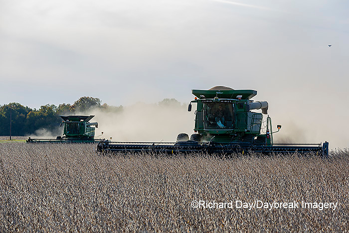 63801-13516 Harvesting soybeans in fall-aerial  Marion Co. IL