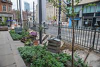 A garden display, Manchester City Centre.
