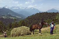 Europe/France/Midi-Pyrénées/09/Ariège/Vallée de Garbet/Env de Cominac: fenaison avec jument et traineau<br /> PHOTO D'ARCHIVES // ARCHIVAL IMAGES<br /> FRANCE 1980