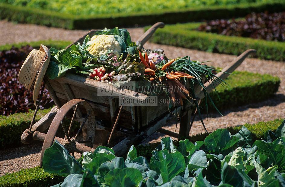 Europe/France/Centre/37/Indre-et-Loire/Villandry: La brouette des jardiniers et légumes de Touraine dans les jardins du chateau