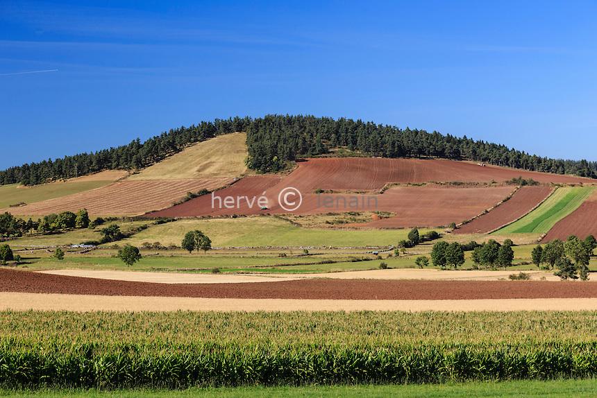 France, Haute-Loire (43), Charbonnier, paysage agricole // France, Haute Loire, Charbonnier, agricultural landscape