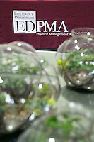 EDPMA 2015 Solutions Summit