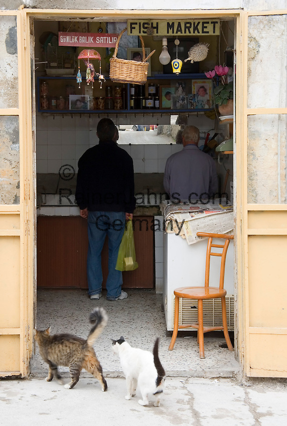 CYPRUS, North cyprus (turkish), Keryneia (Girne): small seaport at north-coast with mediterranean flair - two cats lurking in front of fishmonger's shop<br />