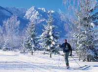 Austria, Tyrol, Kaiserwinkl: Winter Scenery and cross-country ski run near Walchsee at Zahmer Kaiser Mountain