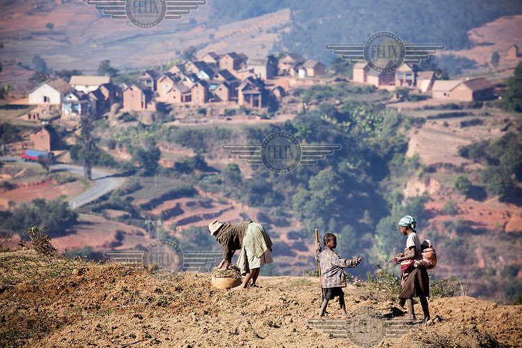 People working on a small plot of land on a high plateau in the centre of Madagascar.
