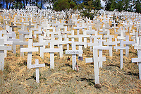 Wooden crosses line a hillside in Lafeyette, California, as a memorial to the service men and women that have been killed in Iraq. Started in November, 2006, the site is in a visible commute corrider and has generated public attention, media coverage, and counter protests. In March of 2008 the crosses and other symbols on the hillside surpassed 4000. Photographed 05/08