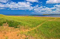 Clouds and vegatation on dunes<br />