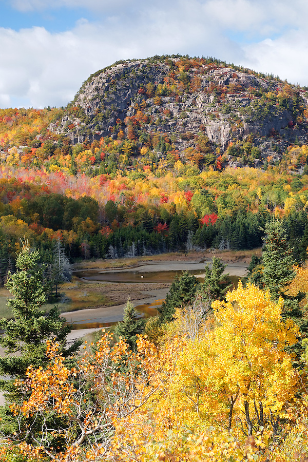 The Beehive rises above a coastal estuary and autumn foliage, Mount Desert Island, Acadia National Park, near Bar Harbor, Maine, USA
