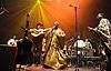 AfroCubism<br /> performing live at The Royal Albert Hall, London, Great Britain <br /> 27th June 2011<br /> <br /> Eliades Ochoa<br /> Kasse Mady Diabat&eacute; <br /> Bassekou Kouyate<br /> <br /> <br /> Photograph by Elliott Franks