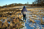 Rear view of model released mature woman walking across heathland with covering of snow, Suffolk, England, UK
