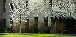1704-10 GCS Spring 0043<br /> <br /> 1704-10 GCS Spring<br /> <br /> April 6, 2017<br /> <br /> Photography by Nate Edwards/BYU<br /> <br /> &copy; BYU PHOTO 2016<br /> All Rights Reserved<br /> photo@byu.edu  (801)422-7322