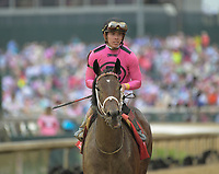 LOUISVILLE, KY - MAY 04: Salty #1 ridden by Tyler Gaffalione during an undercard race on Kentucky Oaks Day at Churchill Downs on May 4, 2018 in Louisville, Kentucky. (Photo by Jessica Morgan/Eclipse Sportswire/Getty Images)