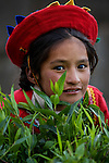 Young Peruvian girl in traditional clothing near Cuzco, Peru.