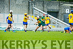 In Action Kerry's Patrice Diggin in the Liberty Insurance all-Ireland Premier Junior Camogie Championship Kerry V Roscommon at Stacks Park on Saturday