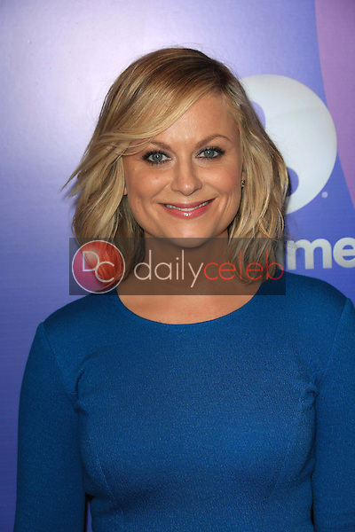 Amy Poehler<br /> at Varoety's 5th Annual Power of Women, Beverly Wilshire, Beverly Hills, CA 10-04-13<br /> David Edwards/Dailyceleb.com 818-249-4998