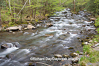 66745-039.14 Middle Prong of the Little Pigeon River in spring, Greenbrier Area, Great Smoky Mountain National Park, TN