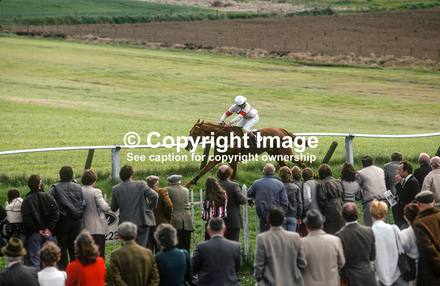 A backward glance from the winning jockey at Downpatrick Races, Co Down, N Ireland, UK,  11th May 1985. 19850511DR1..Copyright Image from Victor Patterson, 54 Dorchester Park, Belfast, UK, BT9 6RJ..Tel: +44 28 9066 1296.Mob: +44 7802 353836.Voicemail +44 20 8816 7153.Skype: victorpattersonbelfast.Email: victorpatterson@me.com.Email: victorpatterson@ireland.com (back-up)..IMPORTANT: If you wish to use this image or any other of my images please go to www.victorpatterson.com and click on the Terms & Conditions. Then contact me by email or phone with the reference number(s) of the image(s) concerned.