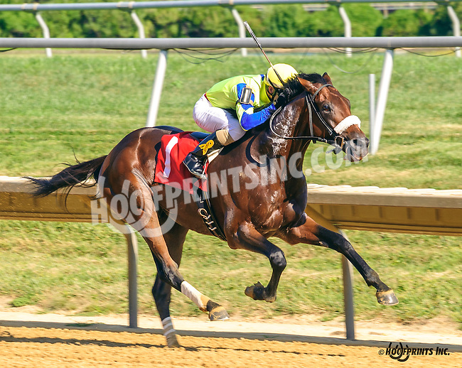 Supah Czech winning at Delaware Park on 9/12/16