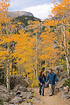 Couple hiking on trail through the golden colors of autumn in aspen stands above Bear Lake on a September morning in Rocky Mountain NP, Colorado/ (MR)#86