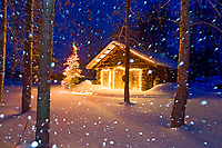 Winter scene of heavy falling snow and a historic log cabin with christmas lights in Wiseman, Alaska
