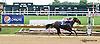Gigi's Alke winning The Christiana Stakes at Delaware Park on 7/9/14