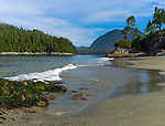 Vancouver Island, British Columbia:<br /> Tonkin Beach near Tofino