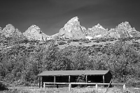 Old log cabin, Grand Teton Park