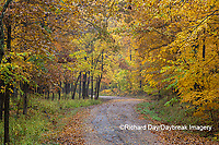 63895-16114 Road & Fall Color at Stephen A. Forbes State Park Marion Co. IL