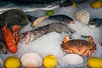 France, Provence-Alpes-Côte d'Azur, Nice: restaurants at Cours Saleya offering fish and seafood | Frankreich, Provence-Alpes-Côte d'Azur, Nizza: reiches Fisch- und Seafood-Angebot der Restaurants auf dem Cours Saleya