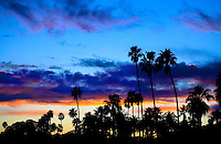 PALM TREES PROVIDE A SILHOUETTE AGAINST THE CALIFORNIA SUNSET NEAR LOS ANGELES, CALIFORNIA