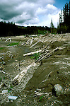 Washington: Volcano, devastation, Mt. St. Helens, mud flow at Muddy Creek, photo: wahele102  .Photo copyright Lee Foster, www.fostertravel.com, 510/549-2202, lee@fostertravel.com