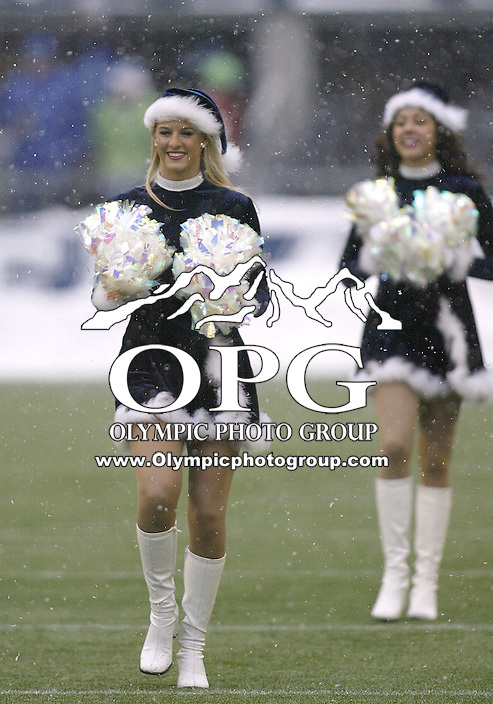 December 21, 2008:  Seattle Seahawks cheerleaders entertained the crowed during the start of the second quarter against NY Jets at Quest Field in Seattle, WA.  Seattle won 13-3 over the NY Jets.