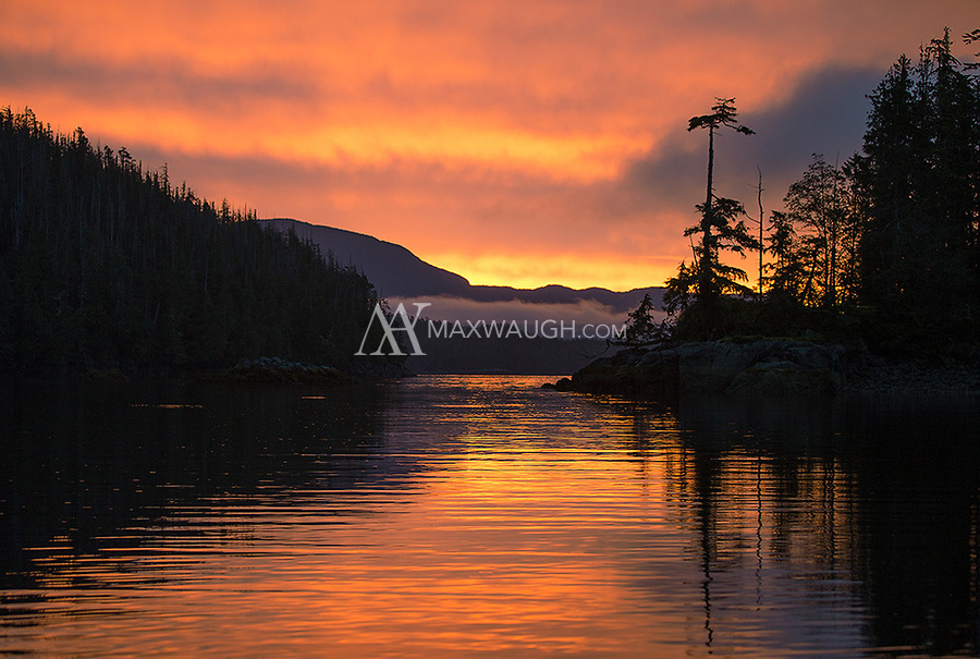 Sunrise in the Great Bear Rainforest.