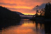 Sunrise in the Great Bear Rainforest.