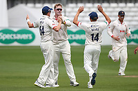 Simon Harmer of Essex celebrates with his team mates after taking the wicket of Steve Davies during Essex CCC vs Somerset CCC, Specsavers County Championship Division 1 Cricket at The Cloudfm County Ground on 25th June 2019