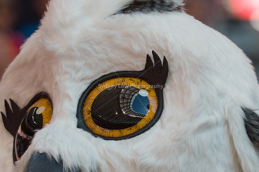 June 12, 2015: The stadium is reflected in the eye of the Official Mascot Shuéme, the young female Great White Owl during a Group C match at the FIFA Women's World Cup Canada 2015 between Switzerland and Ecuador at BC Place Stadium on 12 June 2015 in Vancouver, Canada. Switzerland won 10-1. Sydney Low/AsteriskImages