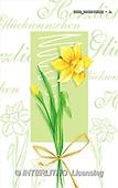 Isabella, FLOWERS, paintings(ITKE024216SLWK-A,#F#)