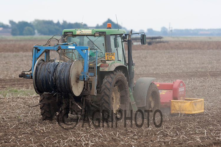 Drip irrigation pipe being lifted out of a potato crop before harvesting.Picture by Tim Scrivener date taken 8th October 2012.mobile 07850 303986 e-mail tim@agriphoto.com.....covering agriculture in The United Kingdom....