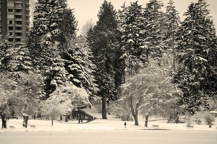 A lone walker along the shore of frozen Lost Lagoon after a rare, heavy snowfall, Stanley Park, Vancouver, BC.