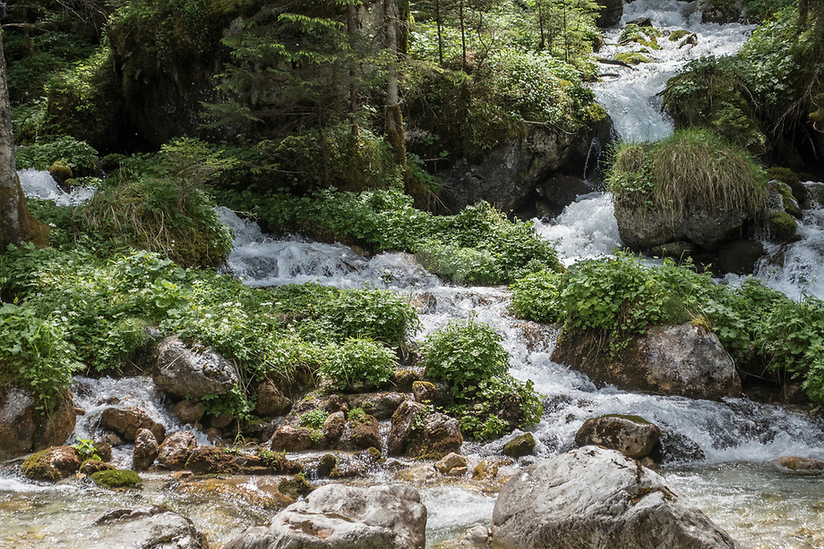 Samenstromende bergbeken in de  Julische Alpen, Slovenië