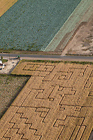 Corn field maze. Pueblo County, Colorado. Sept 2011